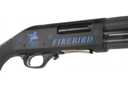 371.472 HEGE-Firebird, Pump .12/76